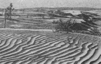 Пустынная местность